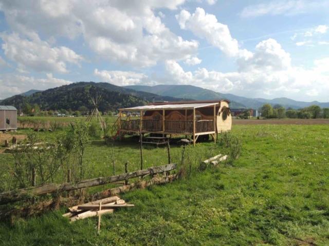 Rundwagen Tiny House im Schwarzwald